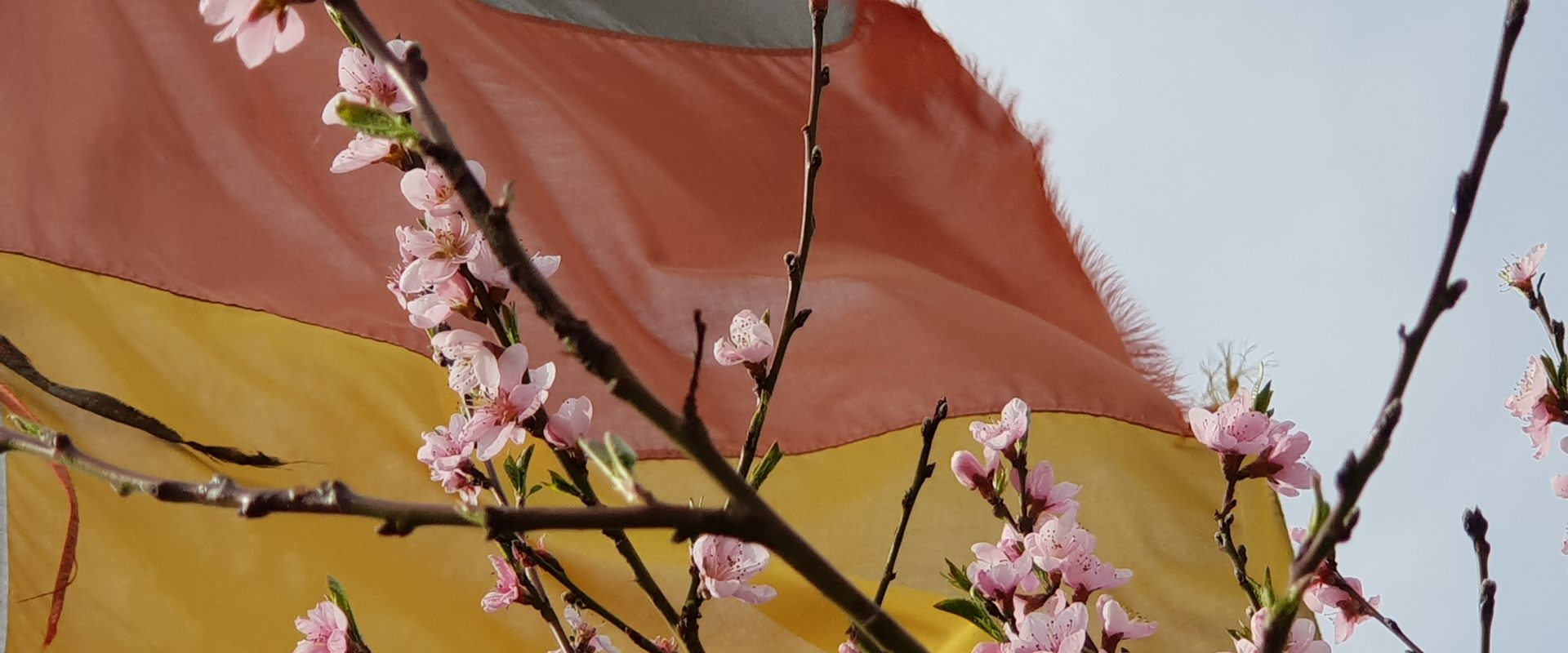 Frühlingsbesuch des Hambacher Schlosses